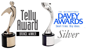 mcelroy films award winning telly davey